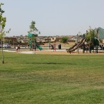 Cabezon Park and play structure